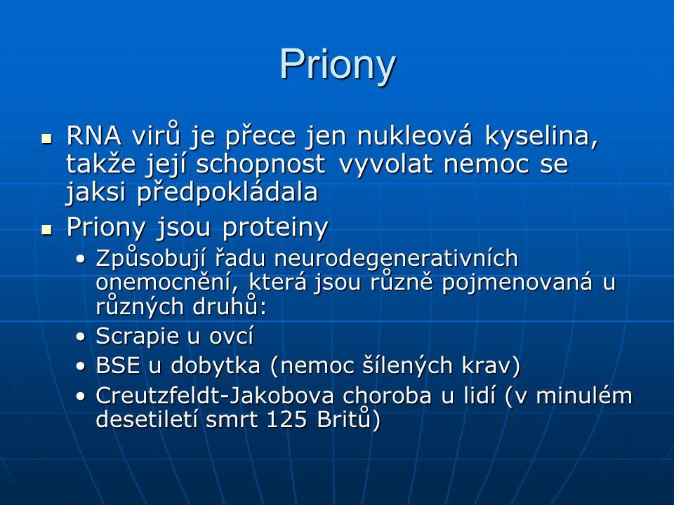 Priony RNA virů je přece jen nukleová kyselina, takže její schopnost vyvolat nemoc se jaksi předpokládala.