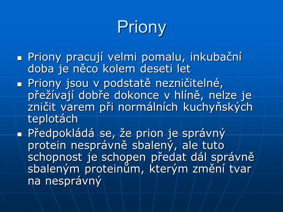 Priony Priony pracují velmi pomalu, inkubační doba je něco kolem deseti let.