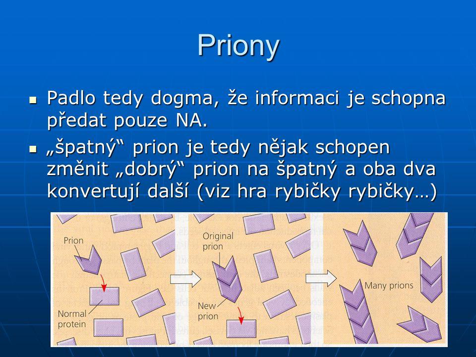 Priony Padlo tedy dogma, že informaci je schopna předat pouze NA.