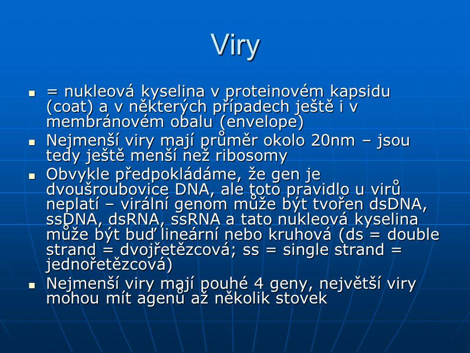 Viry = nukleová kyselina v proteinovém kapsidu (coat) a v některých případech ještě i v membránovém obalu (envelope)