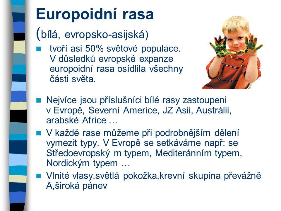 Europoidní rasa (bílá, evropsko-asijská)