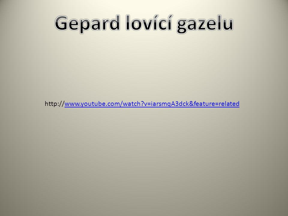 Gepard lovící gazelu http://www.youtube.com/watch v=iarsmqA3dck&feature=related