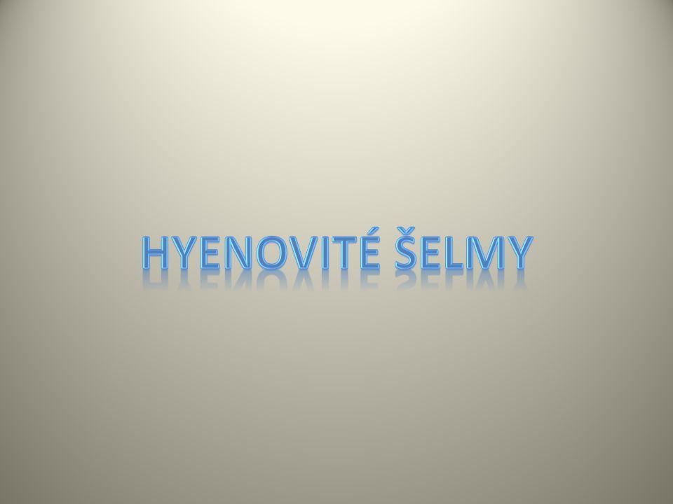 Hyenovité šelmy