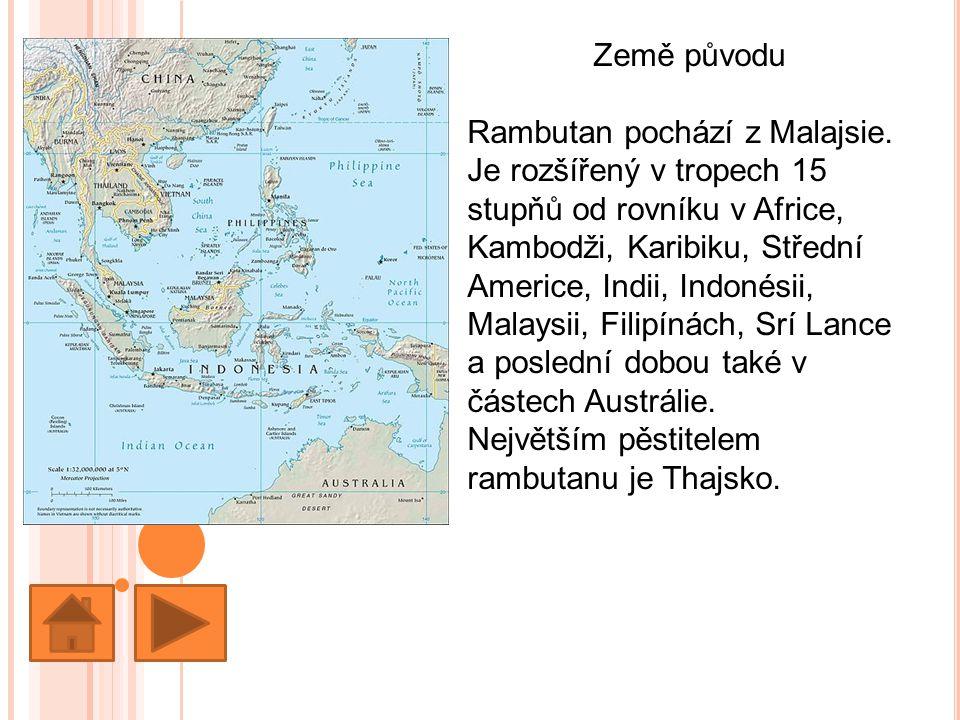Země původu Rambutan pochází z Malajsie.