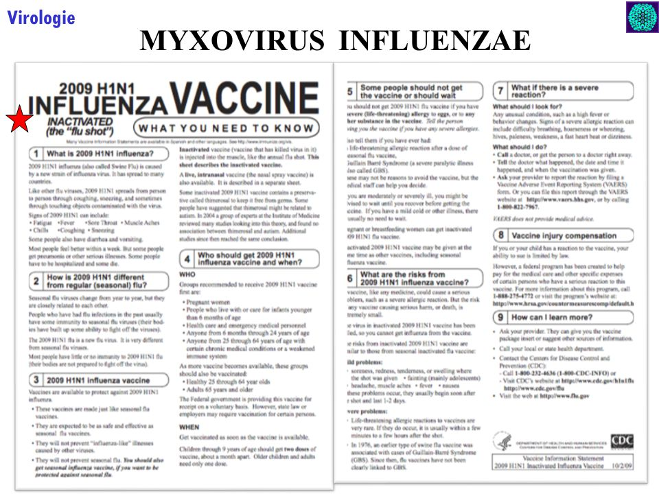 Virologie MYXOVIRUS INFLUENZAE