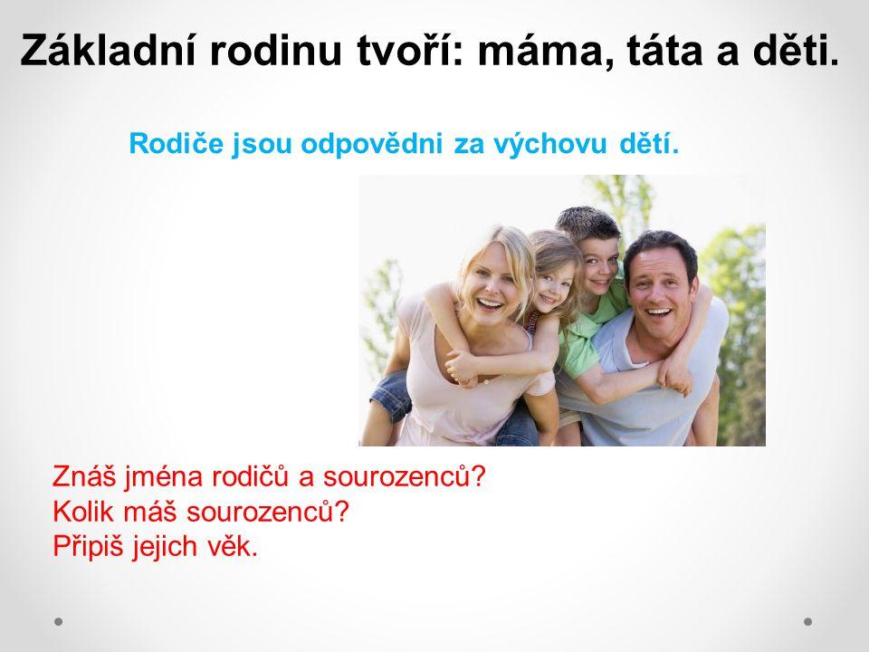 Základní rodinu tvoří: máma, táta a děti.