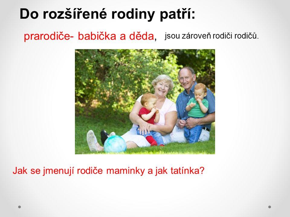 Do rozšířené rodiny patří: