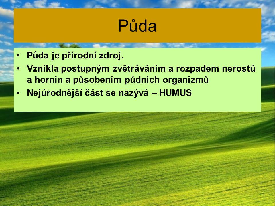 Půda Půda je přírodní zdroj.