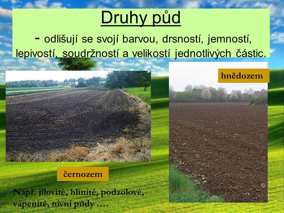 Druhy půd - odlišují se svojí barvou, drsností, jemností, lepivostí, soudržností a velikostí jednotlivých částic.