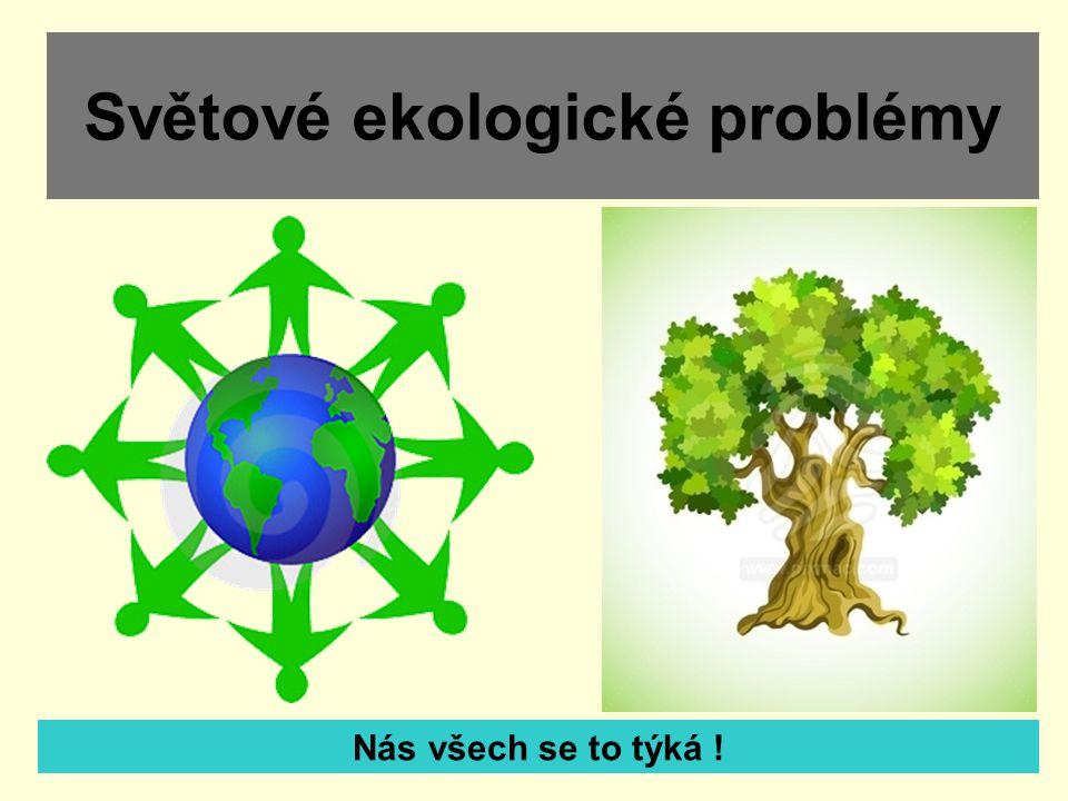 Světové ekologické problémy