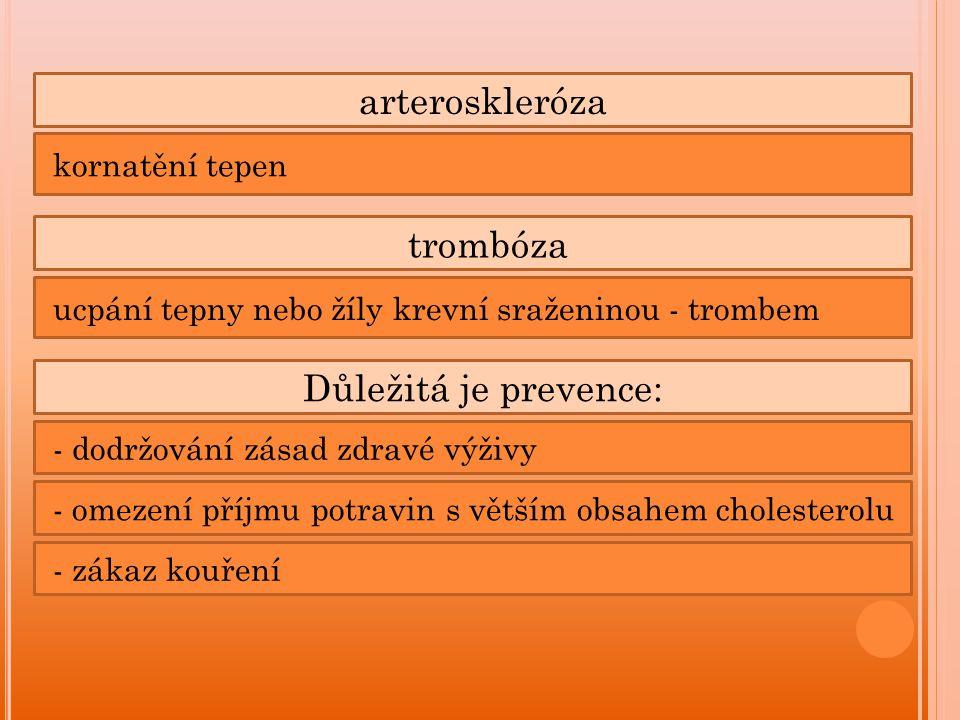 arteroskleróza trombóza Důležitá je prevence: kornatění tepen