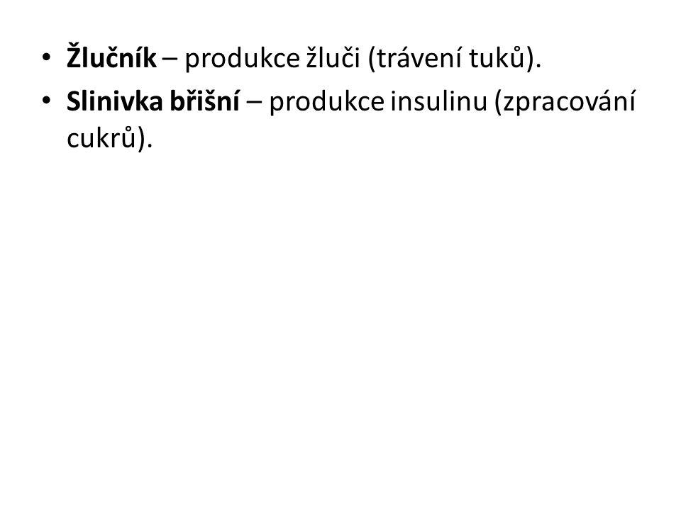 Žlučník – produkce žluči (trávení tuků).