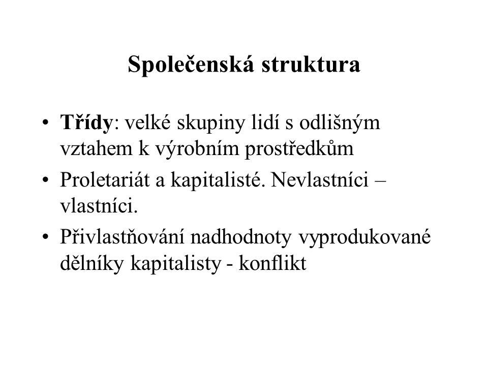 Společenská struktura