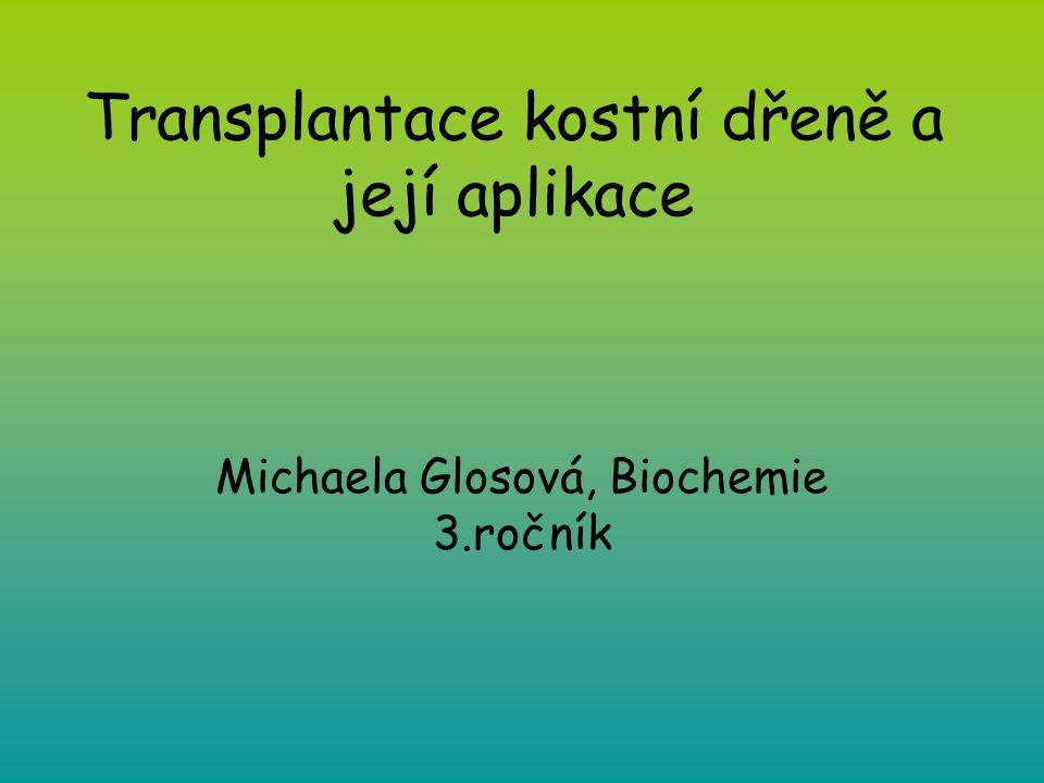 Transplantace kostní dřeně a její aplikace