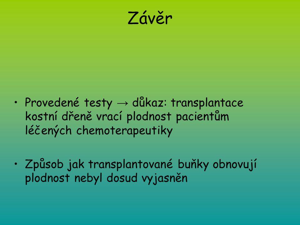Závěr Provedené testy → důkaz: transplantace kostní dřeně vrací plodnost pacientům léčených chemoterapeutiky.