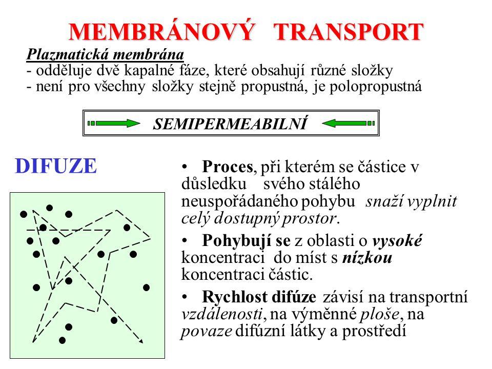 MEMBRÁNOVÝ TRANSPORT DIFUZE