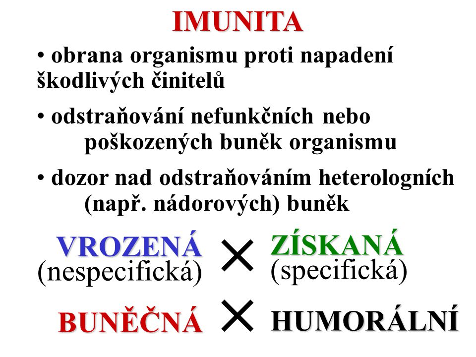   IMUNITA ZÍSKANÁ (specifická) VROZENÁ (nespecifická) HUMORÁLNÍ