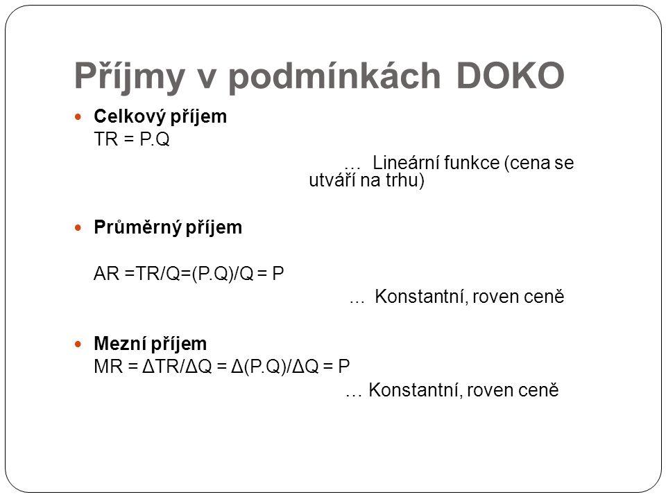 Příjmy v podmínkách DOKO
