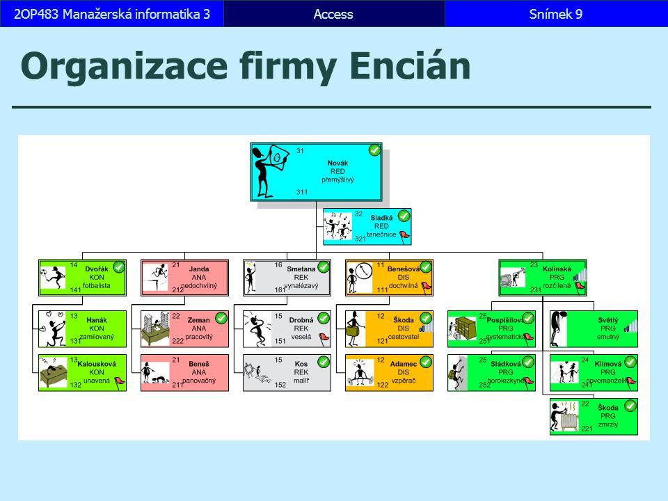 Organizace firmy Encián