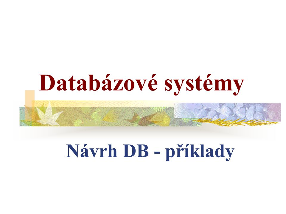 Databázové systémy Návrh DB - příklady