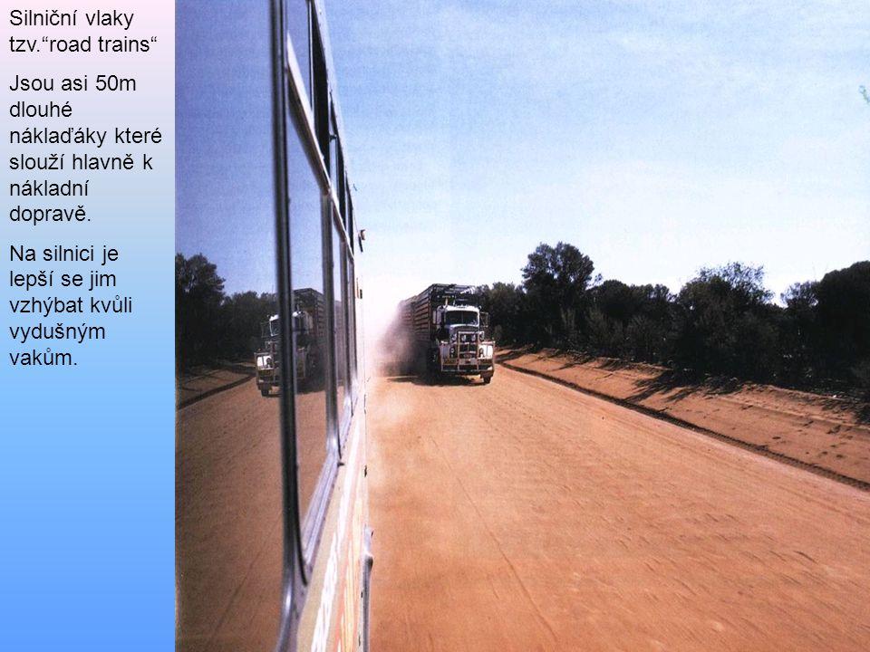 Silniční vlaky tzv. road trains