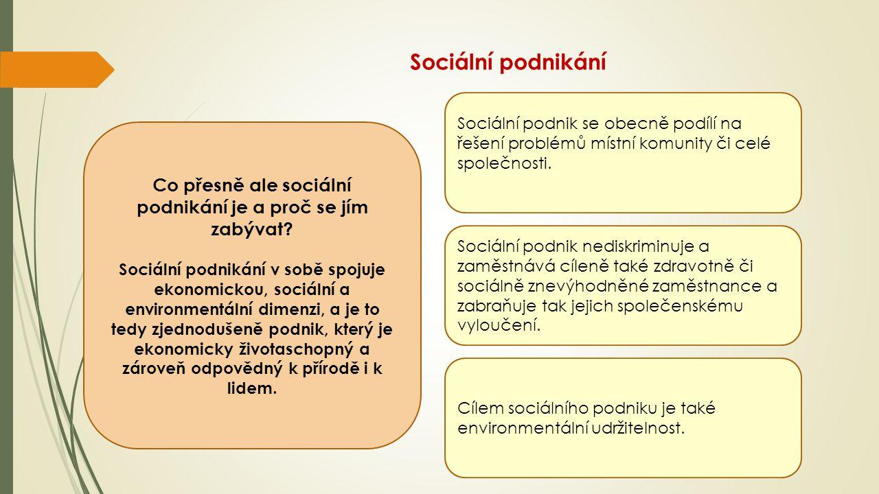 Co přesně ale sociální podnikání je a proč se jím zabývat