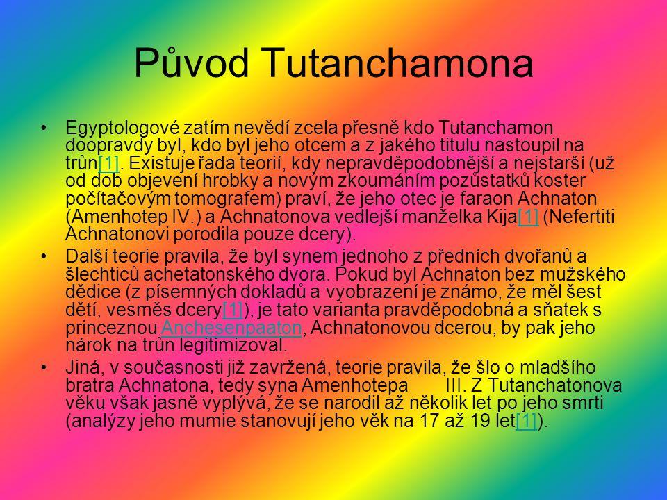 Původ Tutanchamona
