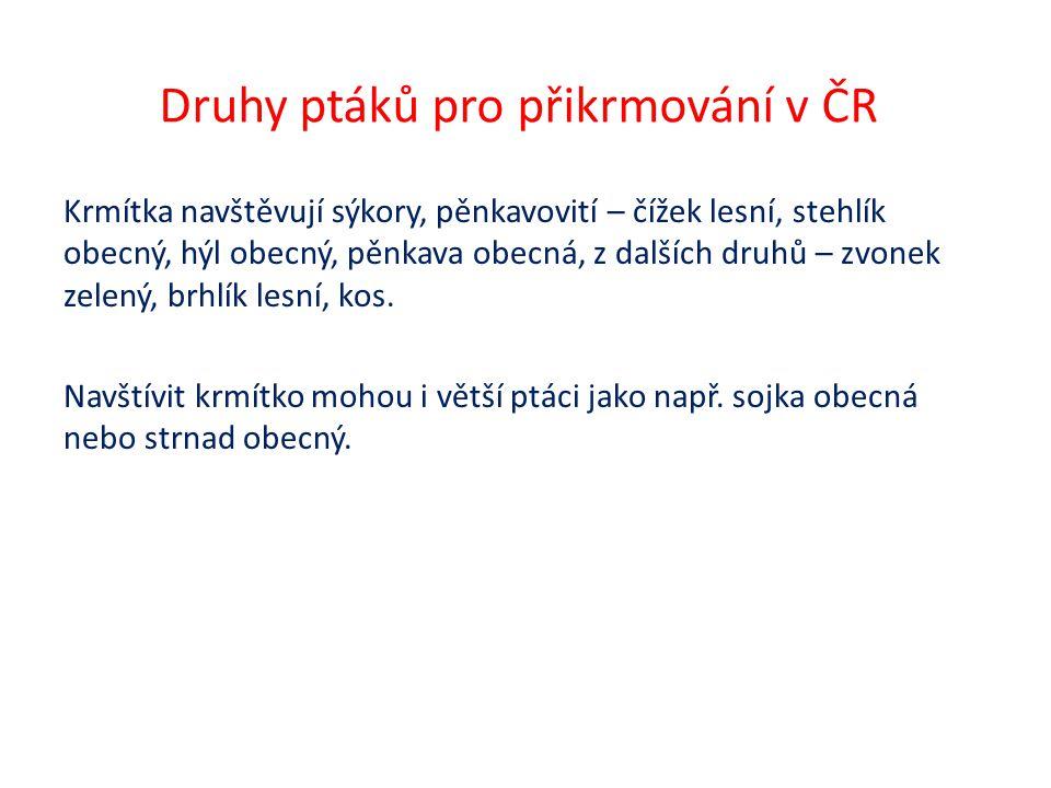 Druhy ptáků pro přikrmování v ČR