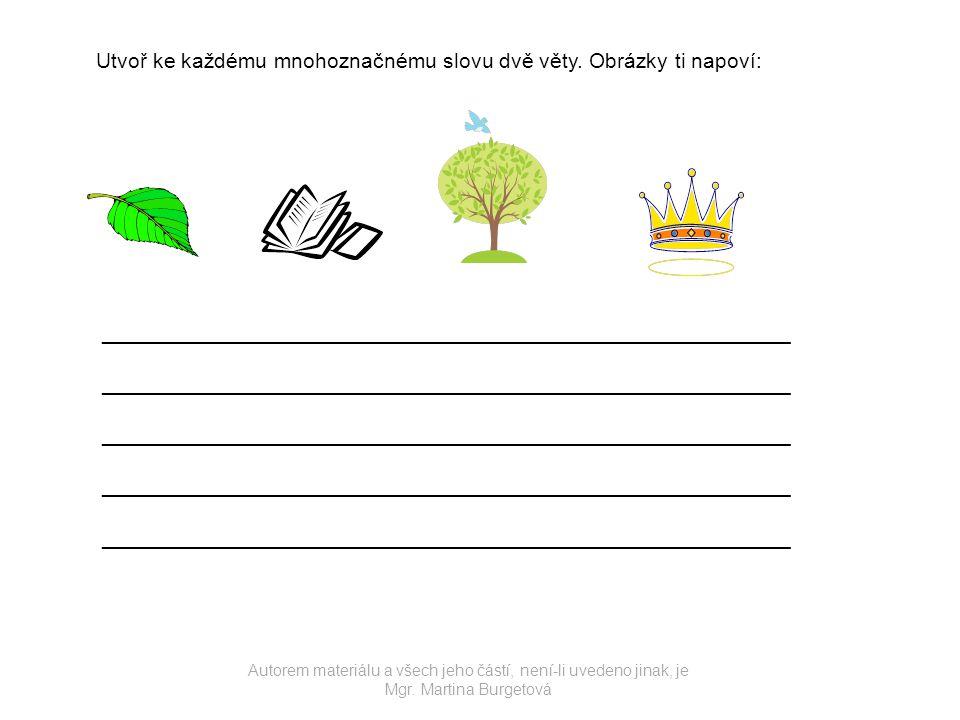 Utvoř ke každému mnohoznačnému slovu dvě věty. Obrázky ti napoví: