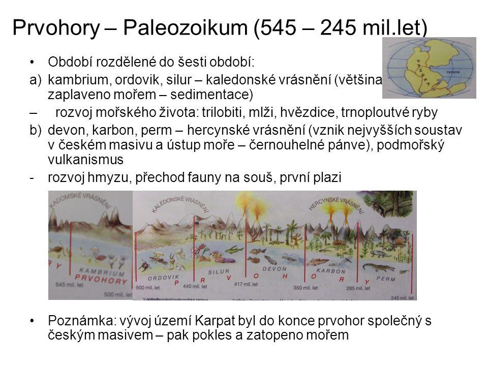 Prvohory – Paleozoikum (545 – 245 mil.let)