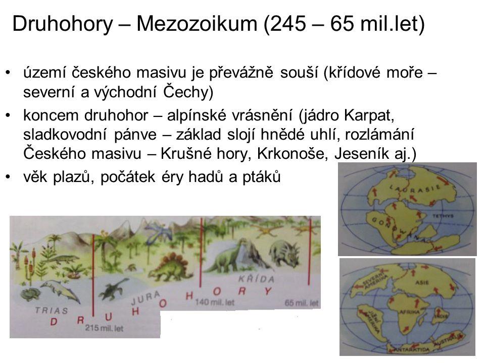 Druhohory – Mezozoikum (245 – 65 mil.let)
