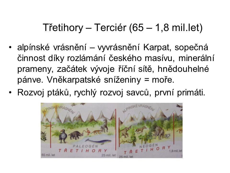 Třetihory – Terciér (65 – 1,8 mil.let)