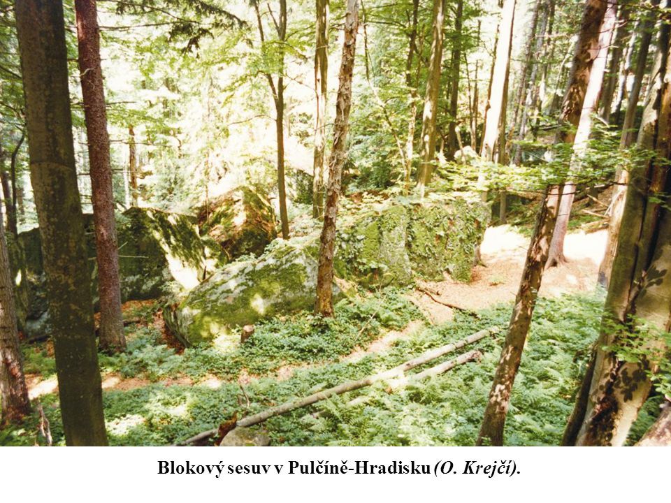 Blokový sesuv v Pulčíně-Hradisku (O. Krejčí).