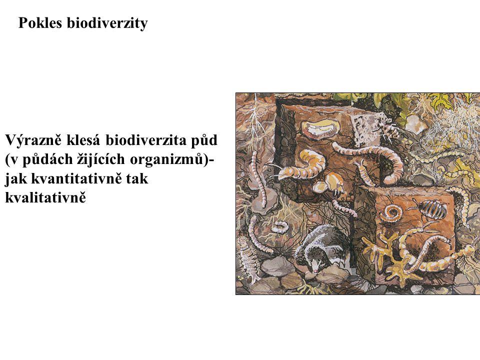 Pokles biodiverzity Výrazně klesá biodiverzita půd.