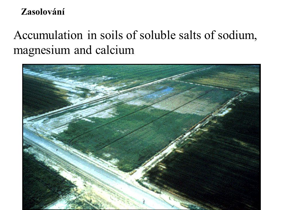 Zasolování Accumulation in soils of soluble salts of sodium, magnesium and calcium