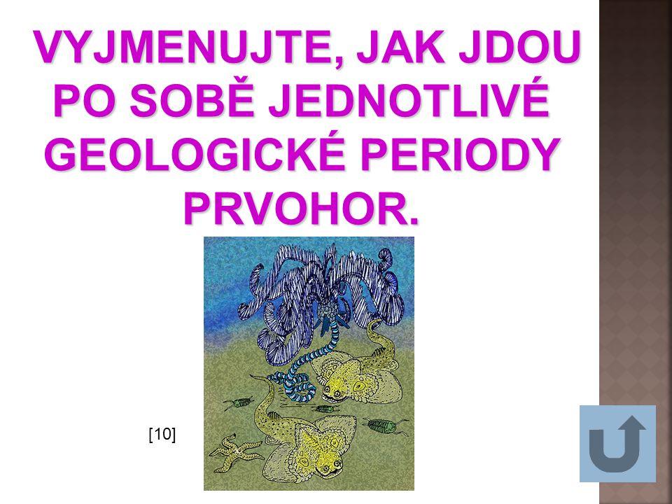 VYJMENUJTE, JAK JDOU PO SOBĚ JEDNOTLIVÉ GEOLOGICKÉ PERIODY PRVOHOR.