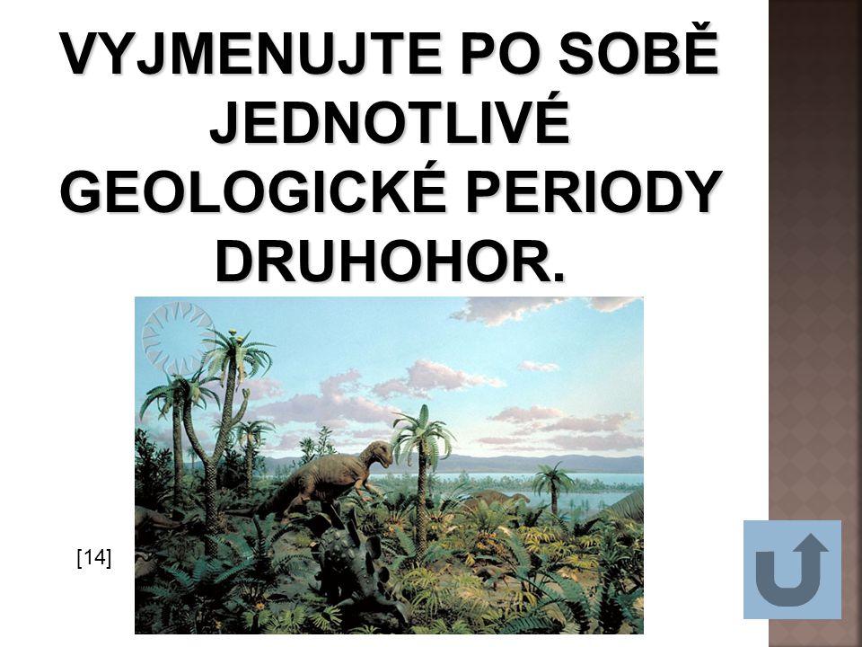 VYJMENUJTE PO SOBĚ JEDNOTLIVÉ GEOLOGICKÉ PERIODY DRUHOHOR.