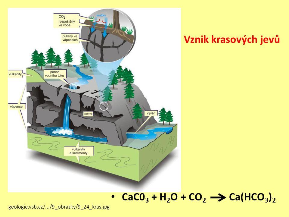 Vznik krasových jevů CaC03 + H2O + CO2 Ca(HCO3)2
