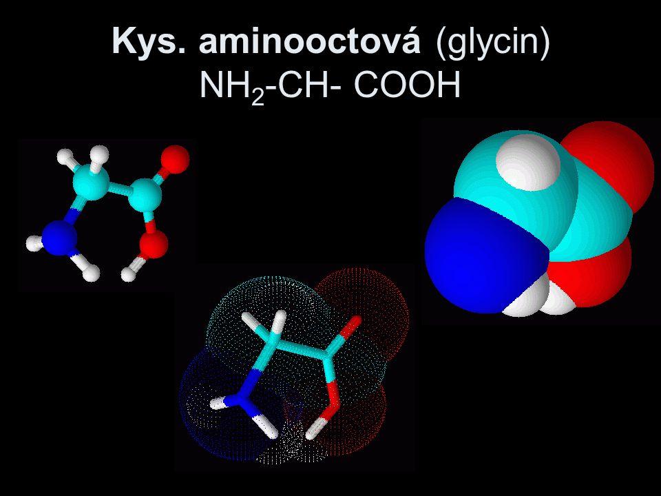 Kys. aminooctová (glycin) NH2-CH- COOH