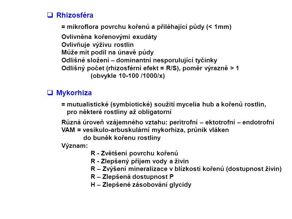 Rhizosféra = mikroflora povrchu kořenů a přiléhající půdy (< 1mm) Ovlivněna kořenovými exudáty. Ovlivňuje výživu rostlin.