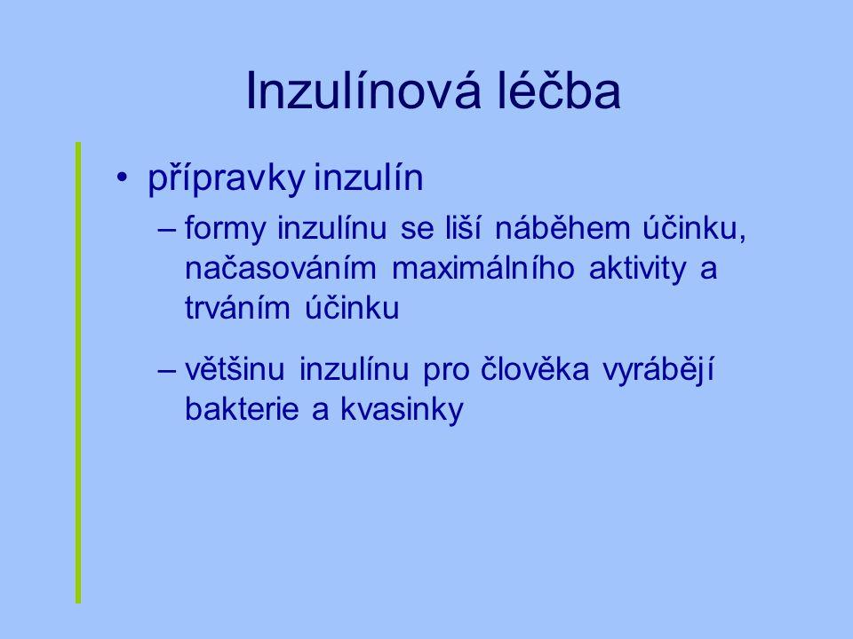 Inzulínová léčba přípravky inzulín