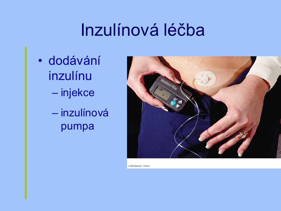 Inzulínová léčba dodávání inzulínu injekce inzulínová pumpa