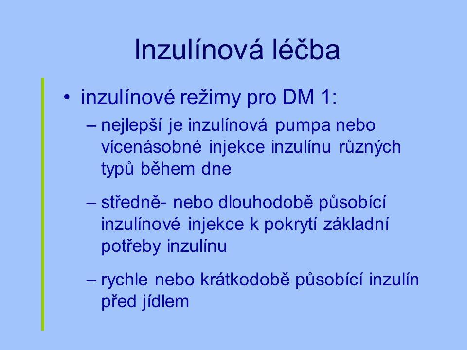 Inzulínová léčba inzulínové režimy pro DM 1: