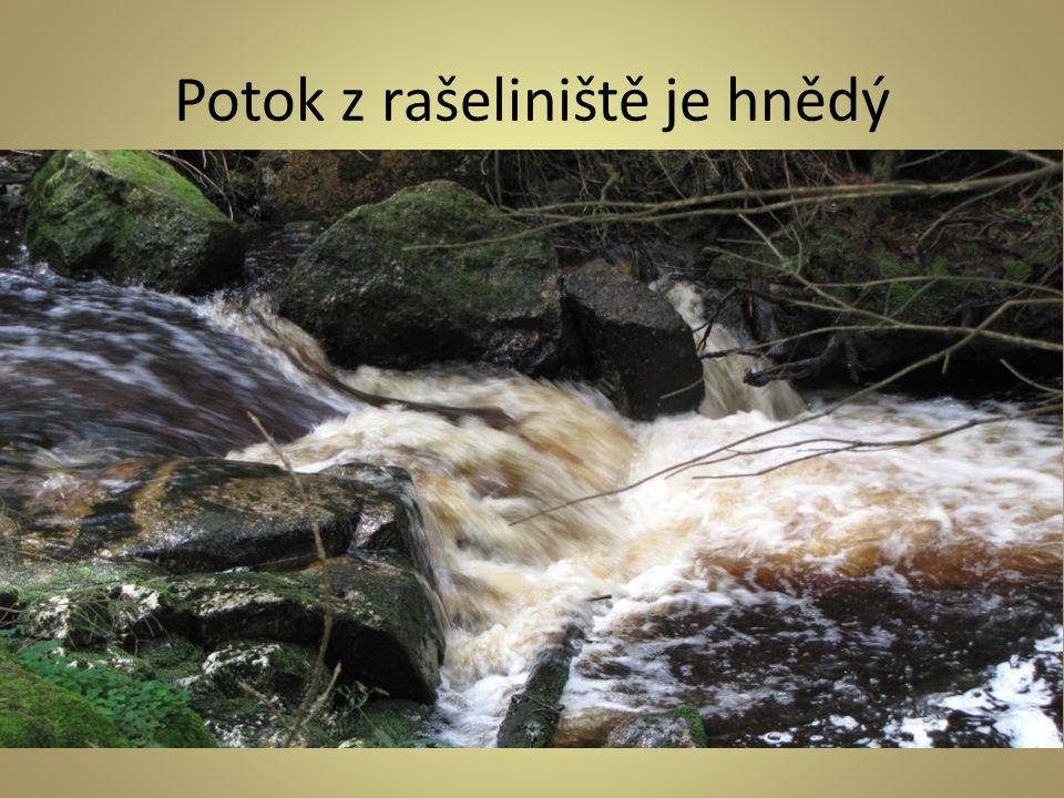 Potok z rašeliniště je hnědý