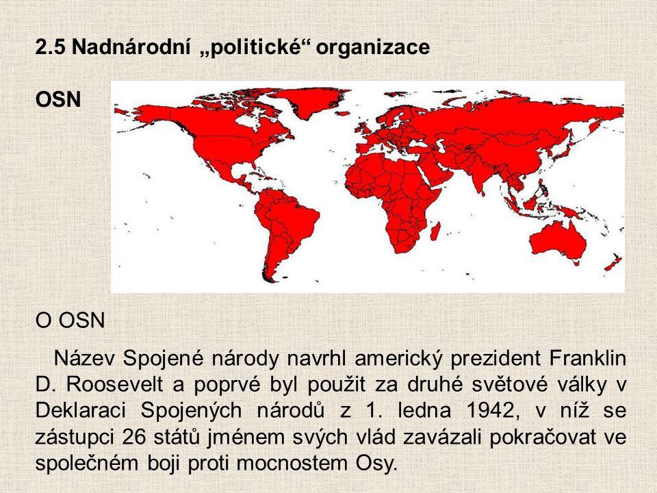 """2.5 Nadnárodní """"politické organizace"""