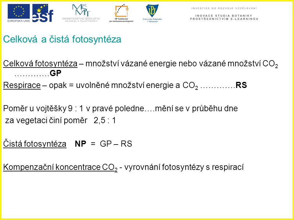 Celková a čistá fotosyntéza