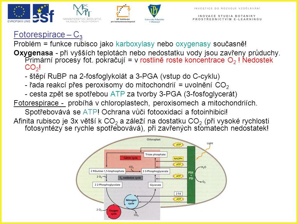 Fotorespirace – C3 Problém = funkce rubisco jako karboxylasy nebo oxygenasy současně!