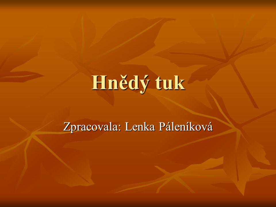 Zpracovala: Lenka Páleníková