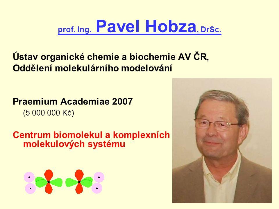 prof. Ing. Pavel Hobza, DrSc.