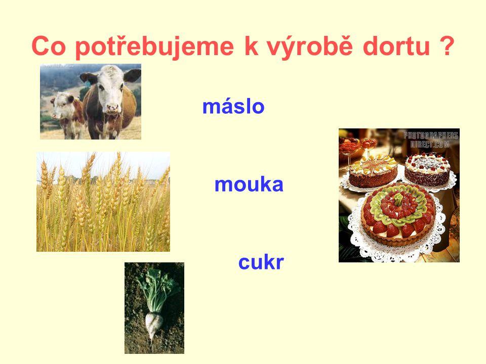 Co potřebujeme k výrobě dortu